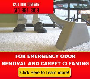 Carpet Cleaning Hayward, CA | 510-964-3109 | Fast Response